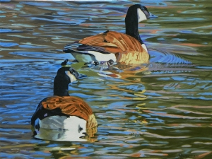 Canada Geese Oil on canvas 18x24
